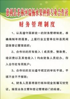 合作社章程