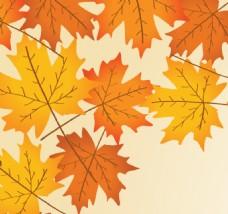 秋天的矢量背景