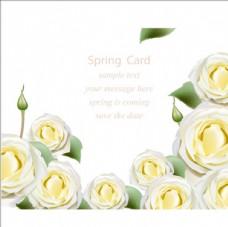 春季黄色花卉海报