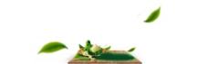 端午节日用的粽子素材