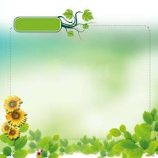 绿叶花朵绿色背景广告栏