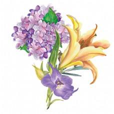 手绘唯美花朵高清素材