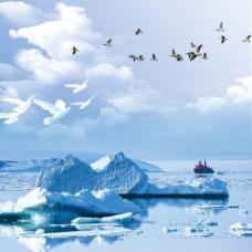 蓝天白云冰海飞鸟素材