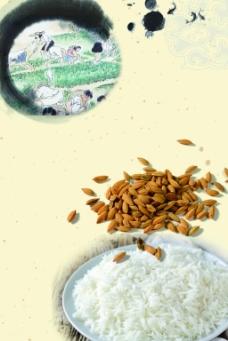 白米饭与稻谷爱护粮食背景