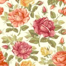 手绘玫瑰背景
