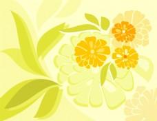 矢量花卉树叶素材背景