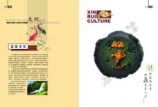 企业文化封面设计PSD素材
