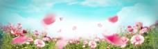 美丽花瓣背景