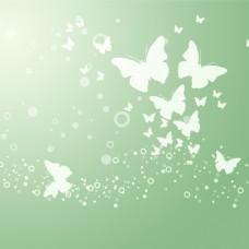 清晰绿色蝴蝶背景图