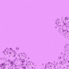 玫瑰花背景图