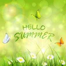 绿色夏天背景素材