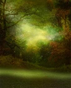 草地树林背景图片