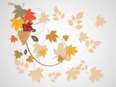 秋季枫叶插画