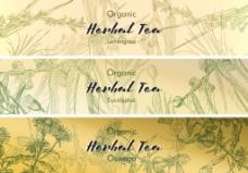 手绘清新茶标签