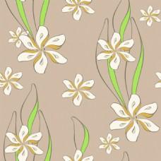 植物叶子花瓣素材背景