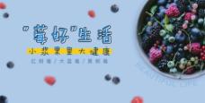 莓水果banner海报