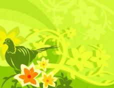 矢量鸟类花卉背景