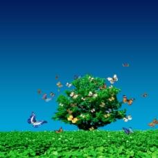 清新绿色大树草地蝴蝶