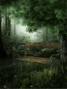 椅子树林背景图片
