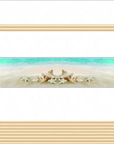 海螺 海星 海滩
