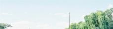 蓝色天空绿色大树背景图