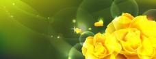 黄色花朵绿底背景