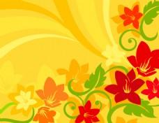 花卉放射线条背景