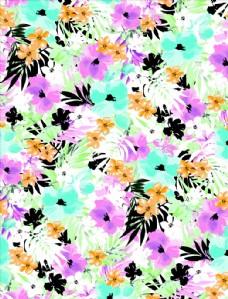 高清花朵设计