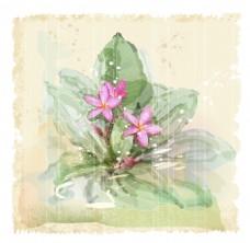 手绘花朵矢量素材