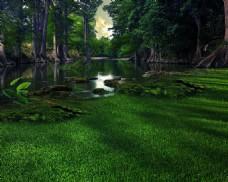 湖水草地树林背景图片