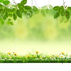 绿叶小花丛背景图