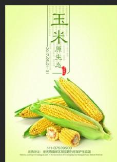 玉米 新鮮玉米