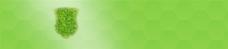 绿色蜂巢底纹背景图