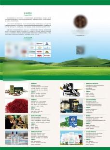 宣传单页设计模版