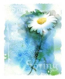水彩白色雏菊矢量素材