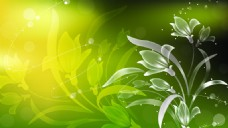 矢量花卉元素背景设计