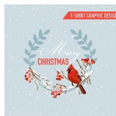 圣诞冬季鸟类