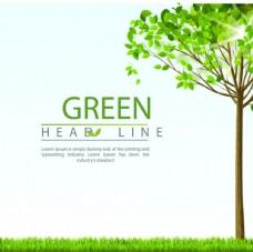 绿色草地树