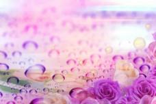 花背景图 幻想 漂亮 水纹 汽