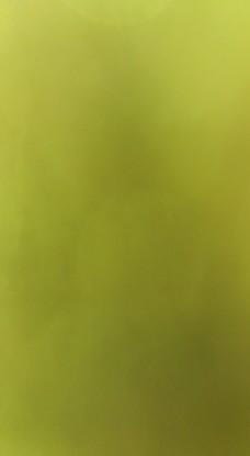 原创绿色渐变背景图