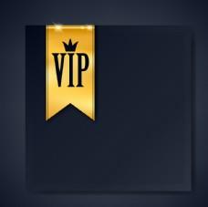 VIP背景豪华设计矢量
