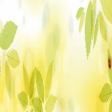 夏季树叶朦胧背景