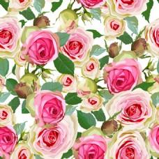 手绘玫瑰花背景素材