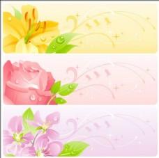 夏天花朵背景素材