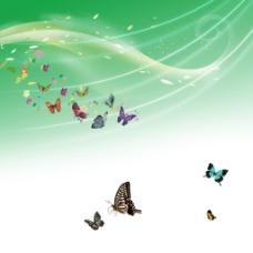 蝴蝶树叶线条光线素材