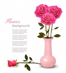 漂亮玫瑰花背景图