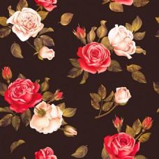 玫瑰矢量背景