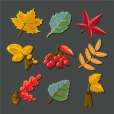 秋天果子枫叶标签图片