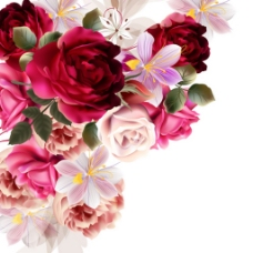 玫瑰花背景素材