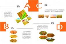 画册设计模板